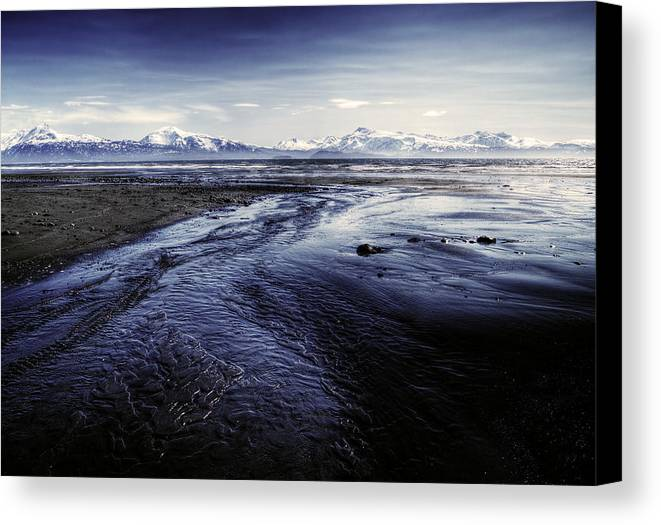 Beach Canvas Print featuring the photograph Low Tide by Michele Cornelius