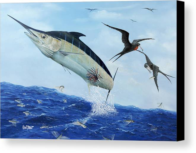 Blue Marlin Canvas Print featuring the painting Airbourne by Kevin Brant