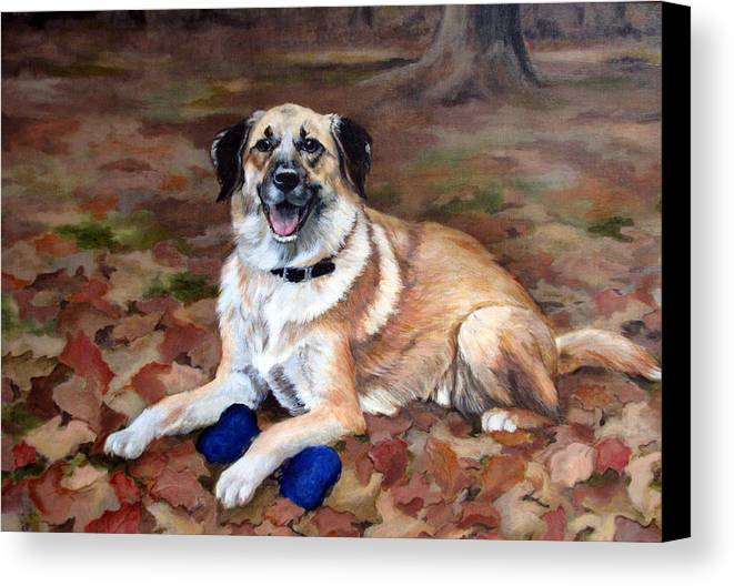 Dog Canvas Print featuring the painting Dutch Shepherd by Sandra Chase
