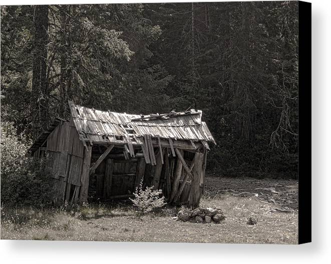 Shelter Canvas Print featuring the photograph Last Days by Betty Depee