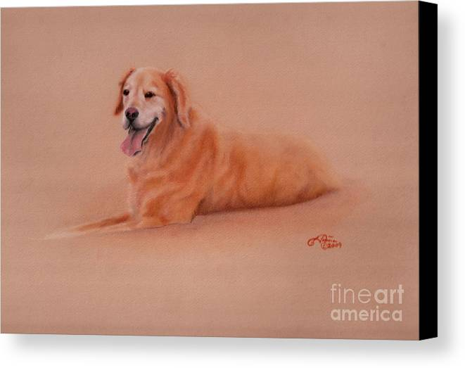 Golden Retriever Canvas Print featuring the pastel Maddie  by Tonia Antilla