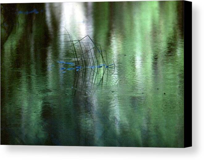 Reflections Canvas Print featuring the photograph Reflect Upon Green by Chris Gudger
