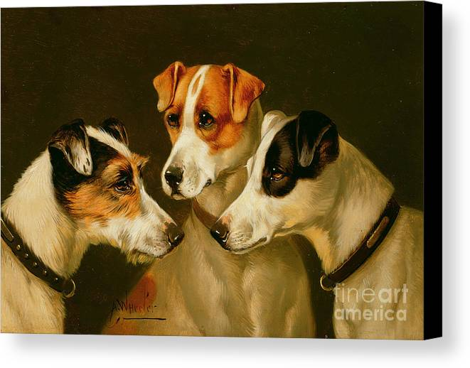 Dog Canvas Print featuring the painting The Hounds by Alfred Wheeler