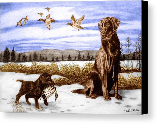 In Training Canvas Print featuring the drawing In Training by Peter Piatt