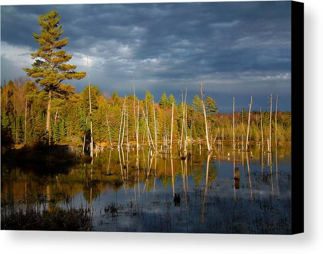 Wetlands Canvas Print featuring the photograph A Fleeting Sunset Moment by Linda McRae