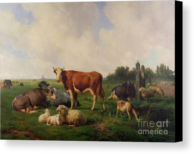 Animals Canvas Print featuring the painting Animals Grazing In A Meadow by Hendrikus van de Sende Baachyssun