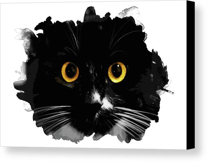 Black Canvas Print featuring the painting Black Cat, Yellow Eyes by Andrea Mazzocchetti