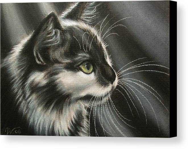 Cat Canvas Print featuring the painting Black-white by Valentina Vassilieva