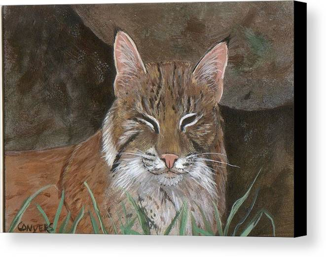 Cat Canvas Print featuring the painting Bob Cat by Peggy Conyers