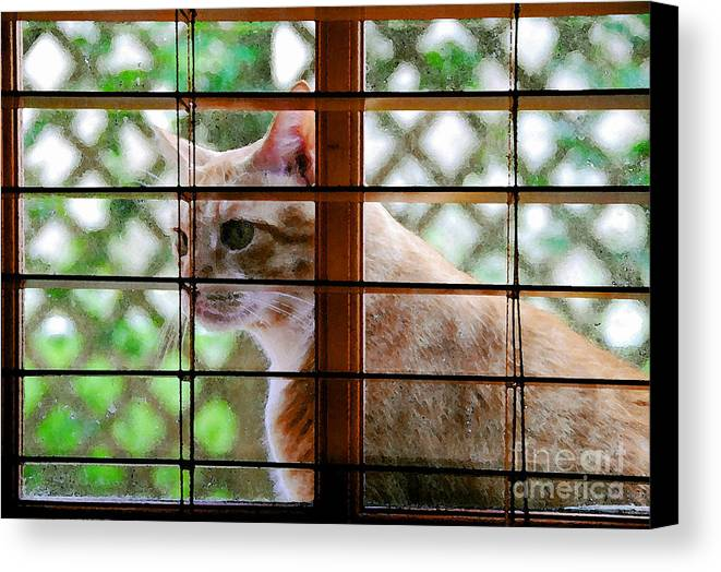 Feline Canvas Print featuring the painting Cat At The Window by David Lee Thompson