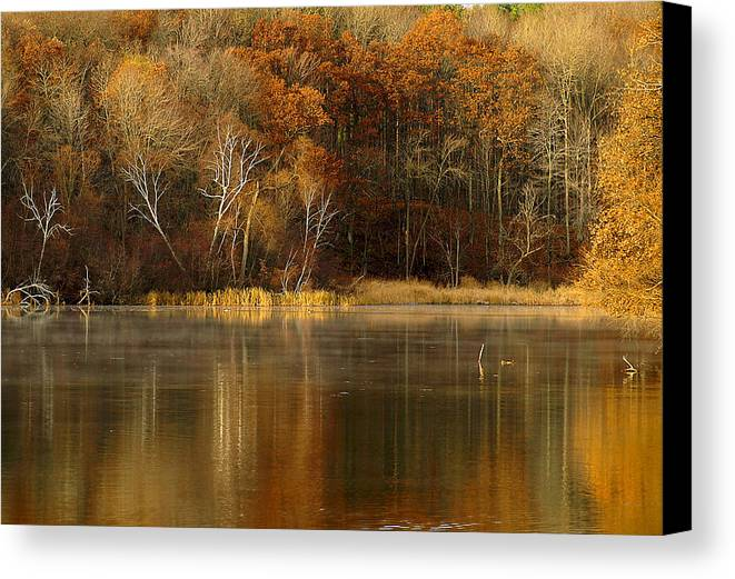 Lake Canvas Print featuring the photograph Fall Cove by Thomas Young