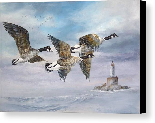 Aleutian Geese Canvas Print featuring the painting Flying Home by Lynne Parker