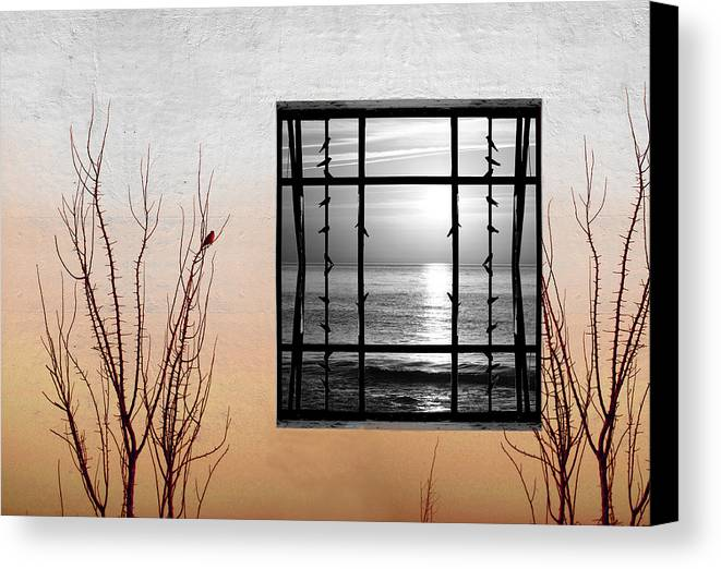 Digital Canvas Print featuring the photograph Freeze by Munir Alawi