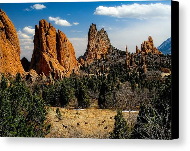 Garden Of The Gods Canvas Print featuring the photograph From Where I Am by Tim Reaves