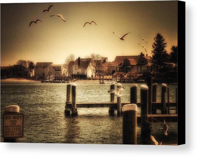 Cape Cod Canvas Print featuring the photograph Harbor View by Gina Cormier