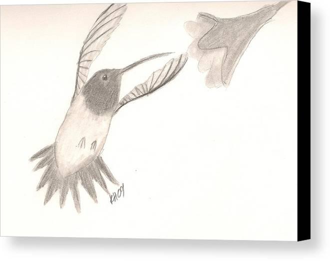 Hummingbird Canvas Print featuring the drawing Hummingbird by Kristen Hurley