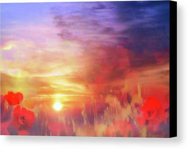 Landscape Canvas Print featuring the photograph Landscape Of Dreaming Poppies by Valerie Anne Kelly
