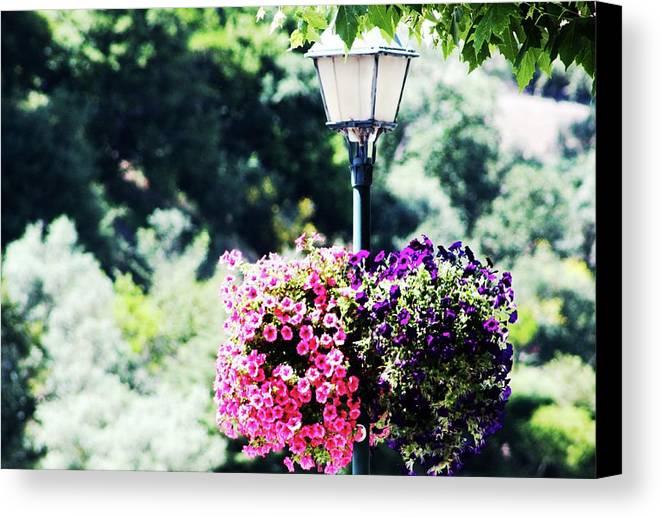 Candeeiro De Rua Canvas Print featuring the photograph Lighted Flowers by Raquel Daniell