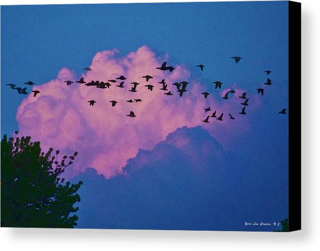 Cloud Canvas Print featuring the photograph Magenta Dream by Yuri Lev