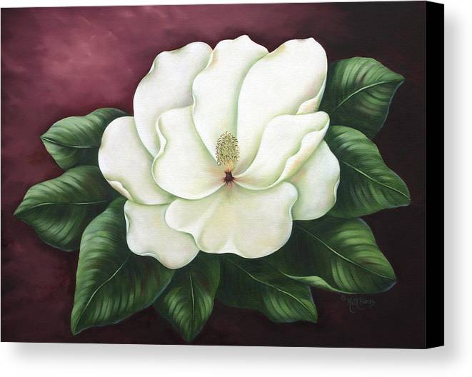 Flower Canvas Print featuring the painting Magnolia by Ruth Bares