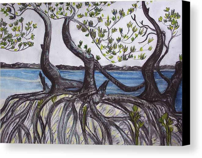 Sea Canvas Print featuring the painting Mangroves by Joan Stratton