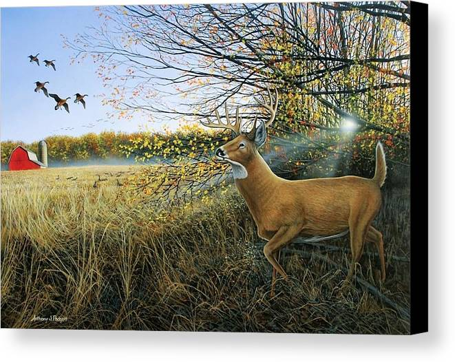 Deer Canvas Print featuring the painting Off The Line by Anthony J Padgett
