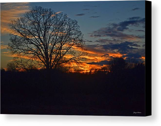 Tree Canvas Print featuring the photograph Silhouette Sunset 004 by George Bostian