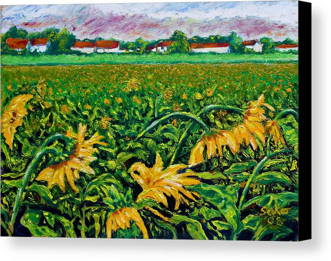 Landscape Canvas Print featuring the painting Sunflower Farm by Robert Sako