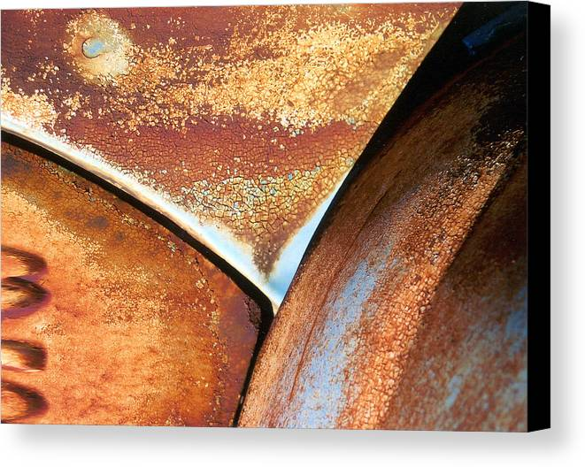 Abstract Canvas Print featuring the photograph The Feminine Mystique by Steve Karol