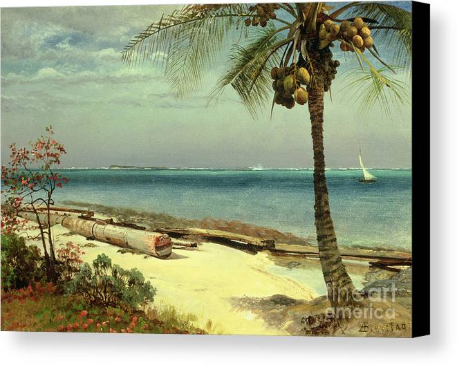 Shore; Exotic; Palm Tree; Coconut; Sand; Beach; Sailing Canvas Print featuring the painting Tropical Coast by Albert Bierstadt