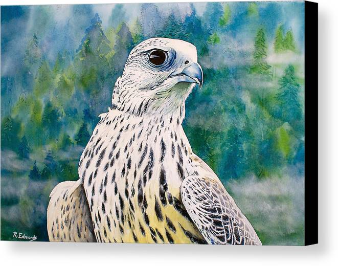 Gyrfalcon Canvas Print featuring the painting Watchful Eye by Raymond Edmonds