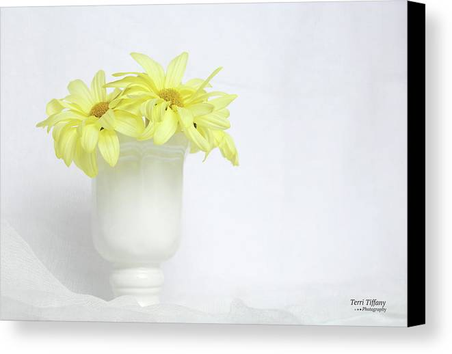 Daisies Canvas Print featuring the photograph White Vase With Yellow Daisies by Terri Tiffany