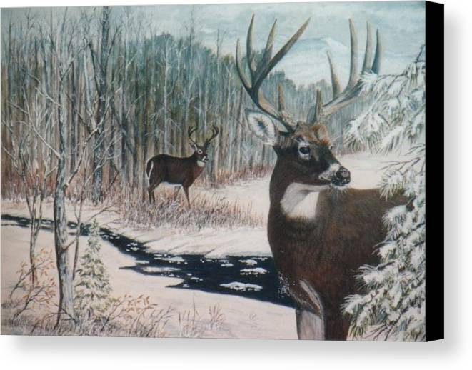 Deer; Snow; Creek Canvas Print featuring the painting Whitetail Deer by Ben Kiger
