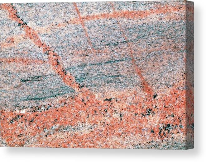 Rock Canvas Print featuring the photograph Cut Surface Showing Granite Invading Gneiss by George Bernard/science Photo Library