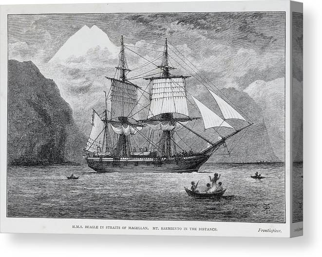 Mount Sarmiento Canvas Print featuring the photograph Hms Beagle by Natural History Museum, London/science Photo Library