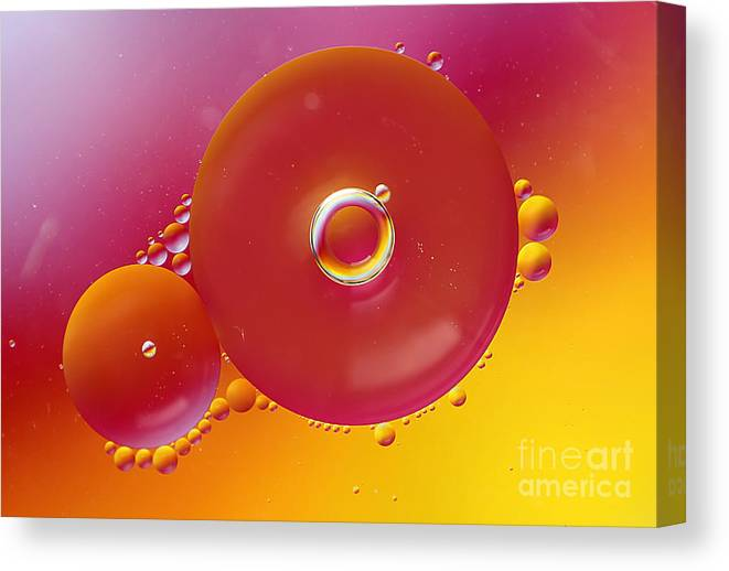 Cool Canvas Print featuring the photograph Colorful Circles by Darren Fisher