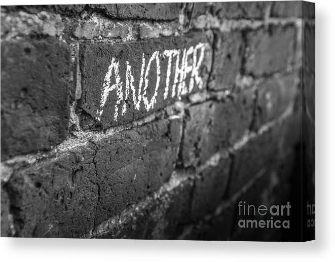 Pink Canvas Print featuring the photograph Another Brick In The Wall by Nicholas Powell