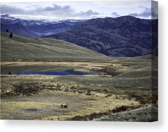 Mountains Canvas Print featuring the photograph Mountain View by Carolyn Fox