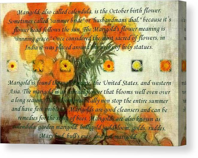Flower Canvas Print featuring the painting October's Child Birthday Card With Text And Marigolds by Taiche Acrylic Art