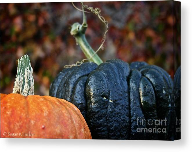 Outdoors Canvas Print featuring the photograph Autumn Riches by Susan Herber
