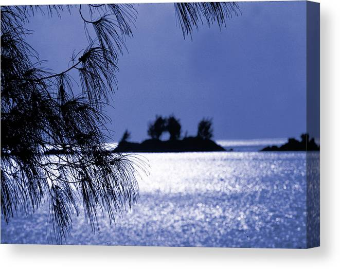 Mangrove Bay Canvas Print featuring the photograph Bermuda Blues by Mike Flynn
