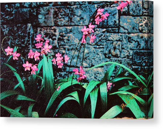 Pink Flowers Canvas Print featuring the photograph Pink Flowers Gray Wall by Bob Whitt