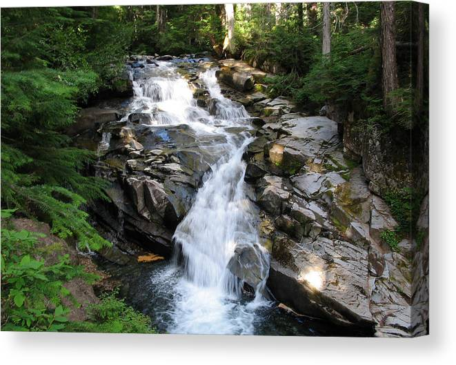 Waterfall Canvas Print featuring the photograph Rainier Waterfall by Ty Nichols