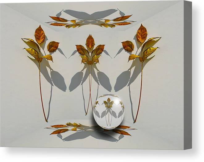 Leaves Canvas Print featuring the photograph 4107 by Peter Holme III