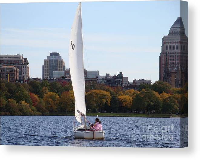 Charles River Canvas Print featuring the photograph a day on the Charles by Robyn Leakey