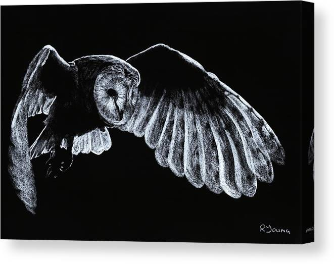 Owl Canvas Print featuring the pastel Barn Owl by Richard Young