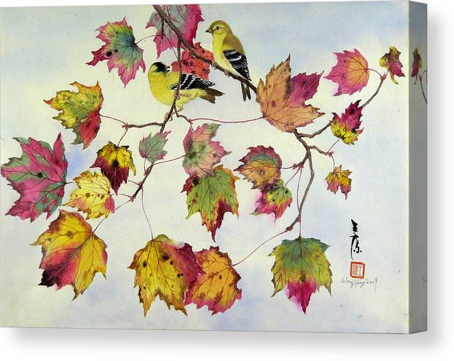 Bird Canvas Print featuring the painting Birds On Maple Tree 10 by Ying Wong