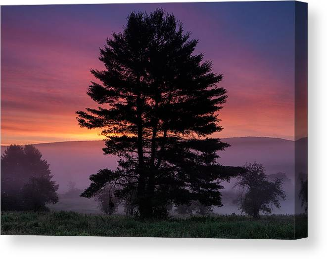 Landscape Canvas Print featuring the photograph Intense Dawn Sky Over A Foggy South Amherst by Stephen Gingold