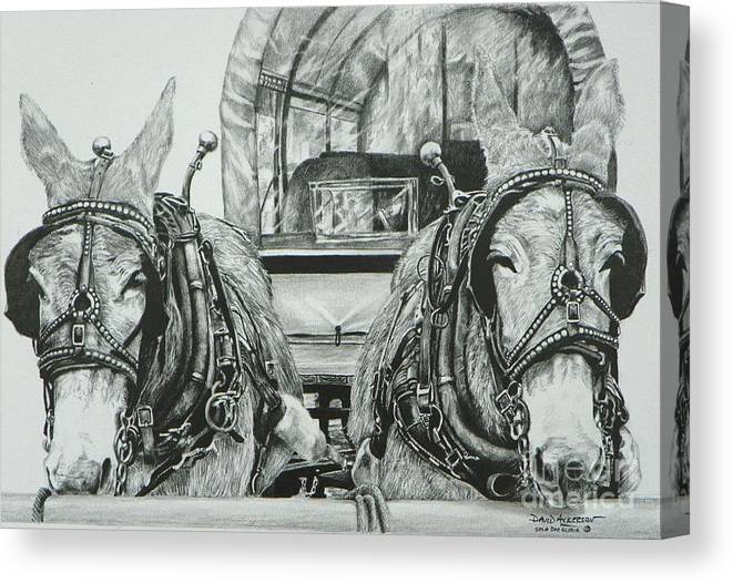 Texas Artist David Ackerson Canvas Print featuring the drawing Jude And Claude by David Ackerson