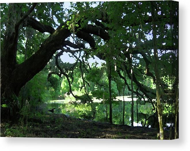 Live Oak Canvas Print featuring the digital art Live Oak Hidden Pond by Marnie Hutcheson